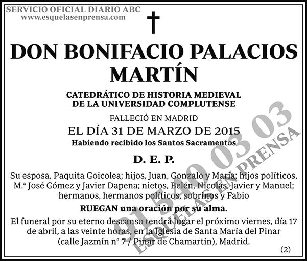 Bonifacio Palacios Martín